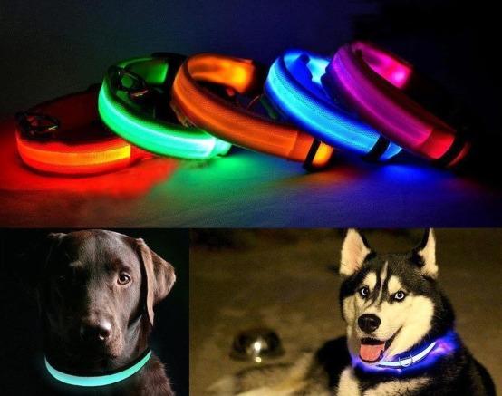 collares-led-para-mascota-430601-mco20357635851_072015-f