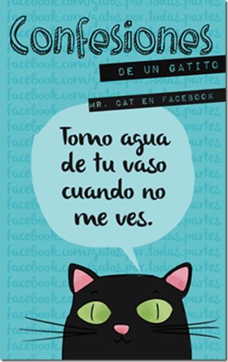 gatos-confesiones-gatunas-cosasdivertidas-1_thumb4